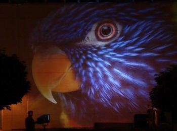 Fényfestés - Night Projection - vetítőgép promóció