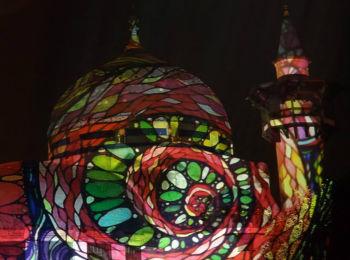 Fényfestés - Night Projection - Állatkertek éjszakája